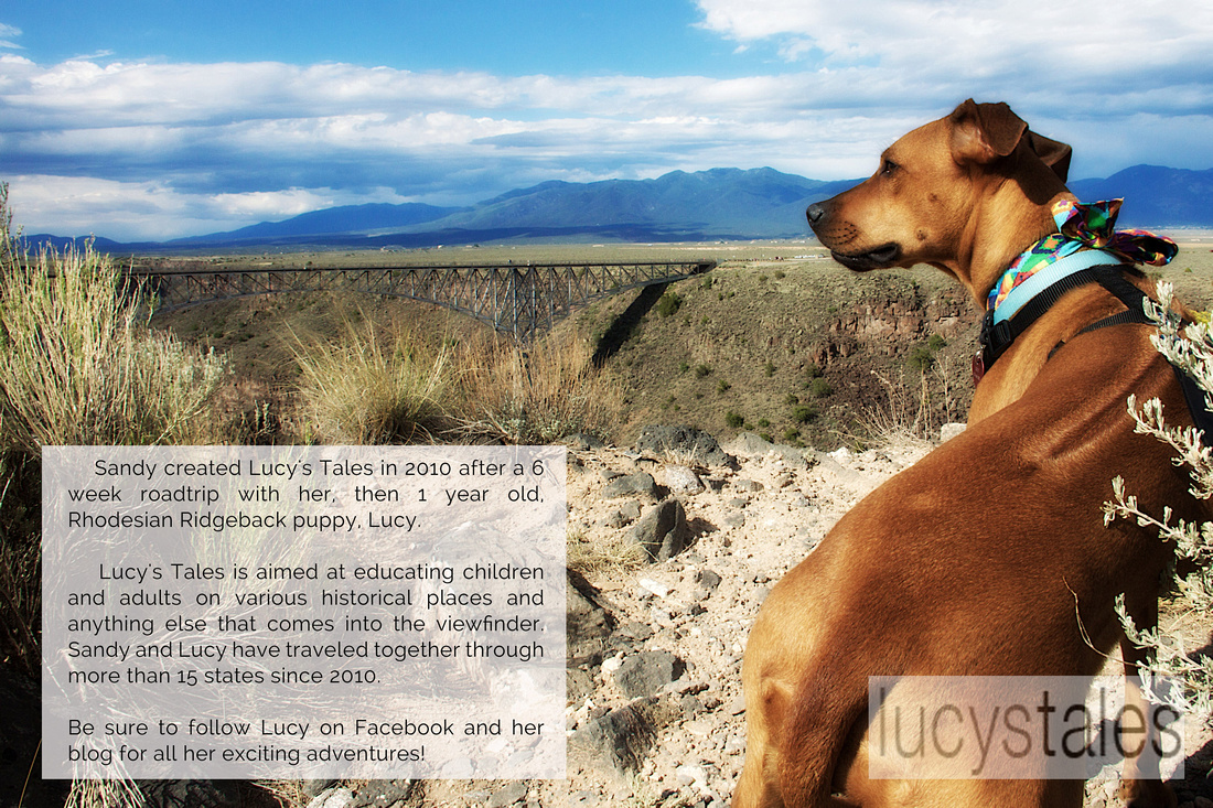 Lucys tales taos new mexico sandy adams photography